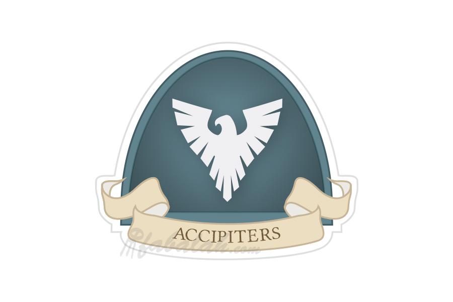 ByFabalah-40k-Accipiters